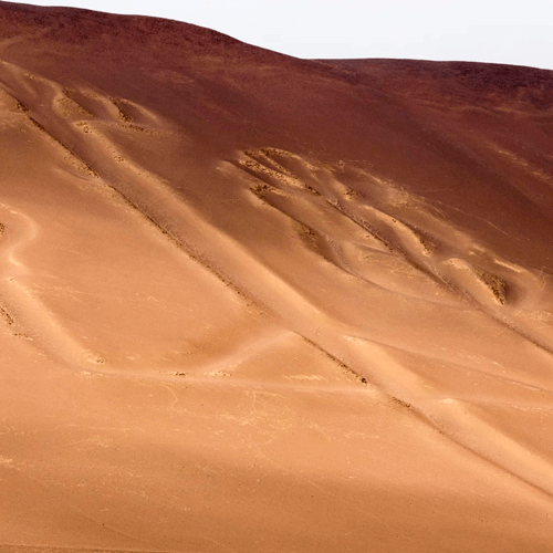 Lineas De Nazca 1 Dia