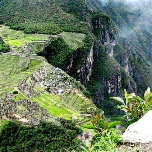 Machu Picchu reúne 400 tipos de aves y la mayor densidad de orquídeas en estado silvestre